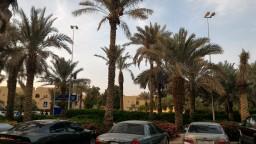 One day in Riyadh