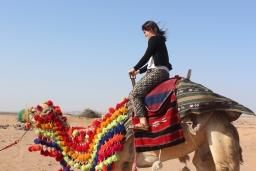 Asfan Desert Fun